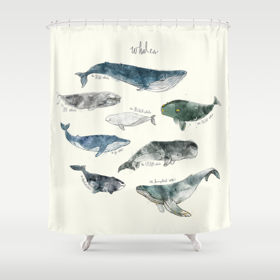 whale curtain